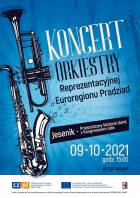 Koncert Orchestru Euroregionu Praděd