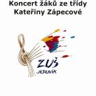 Koncert žáků ze třídy Kateřiny Zápecové, DiS.