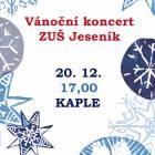Vánoční koncert ZUŠ Jeseník