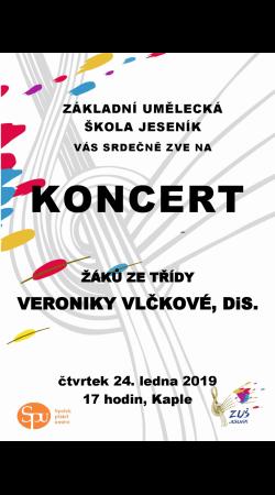 Koncert žáků ze třídy Veroniky Vlčkové, DiS.
